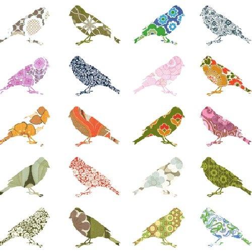 birds_28