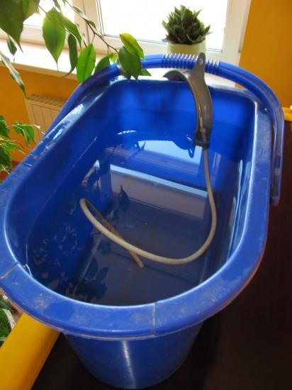 капельный полив, капельный полив своими руками, как сделать капельный полив